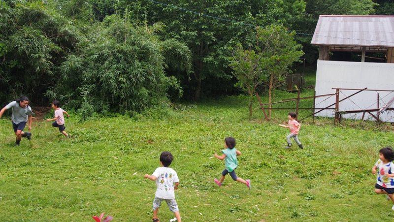 ごかんのもりの園庭で遊ぶこどもたち