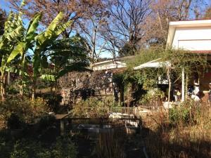 中瀬幼稚園園庭風景
