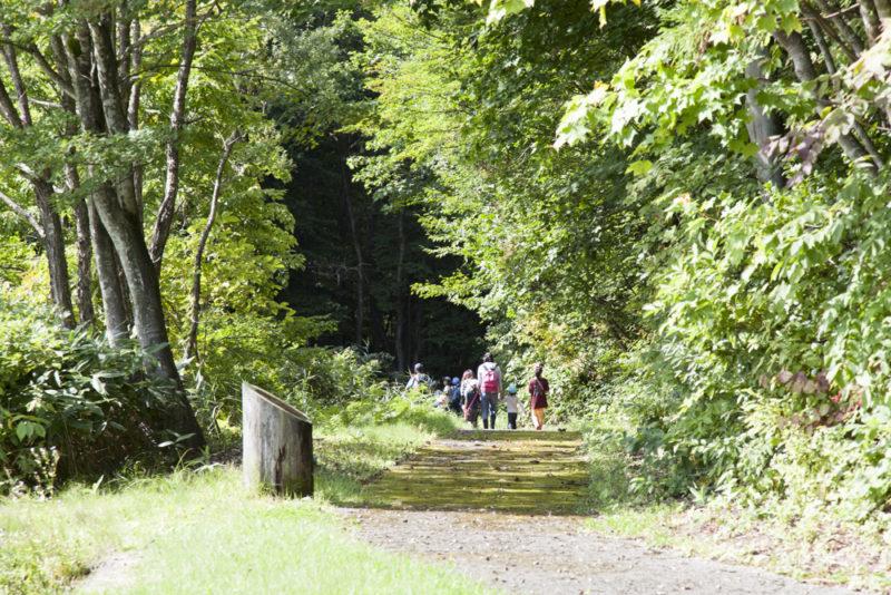 羽黒山でのペアレンティング・キャンプの写真から photo:疋田千里