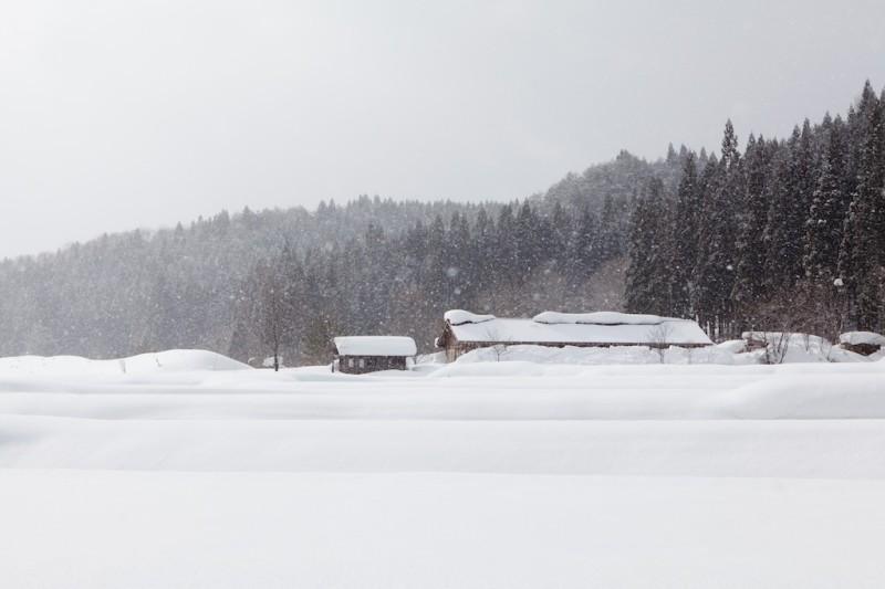 秋田の冬は長い。一年の半分は厚い雪に覆われる。