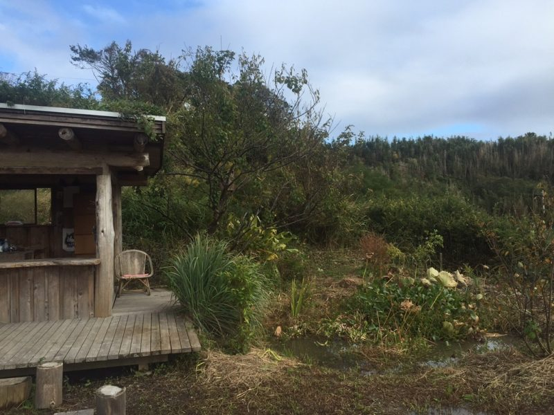 千葉県南房総市和田町にあるPermaculture AWAファーム。約1000坪の農場に木造の平屋、大きなビニールハウス、田んぼ、小さな果樹園などがある。自然のエコシステムを活かし、環境に配慮したデザインになっている